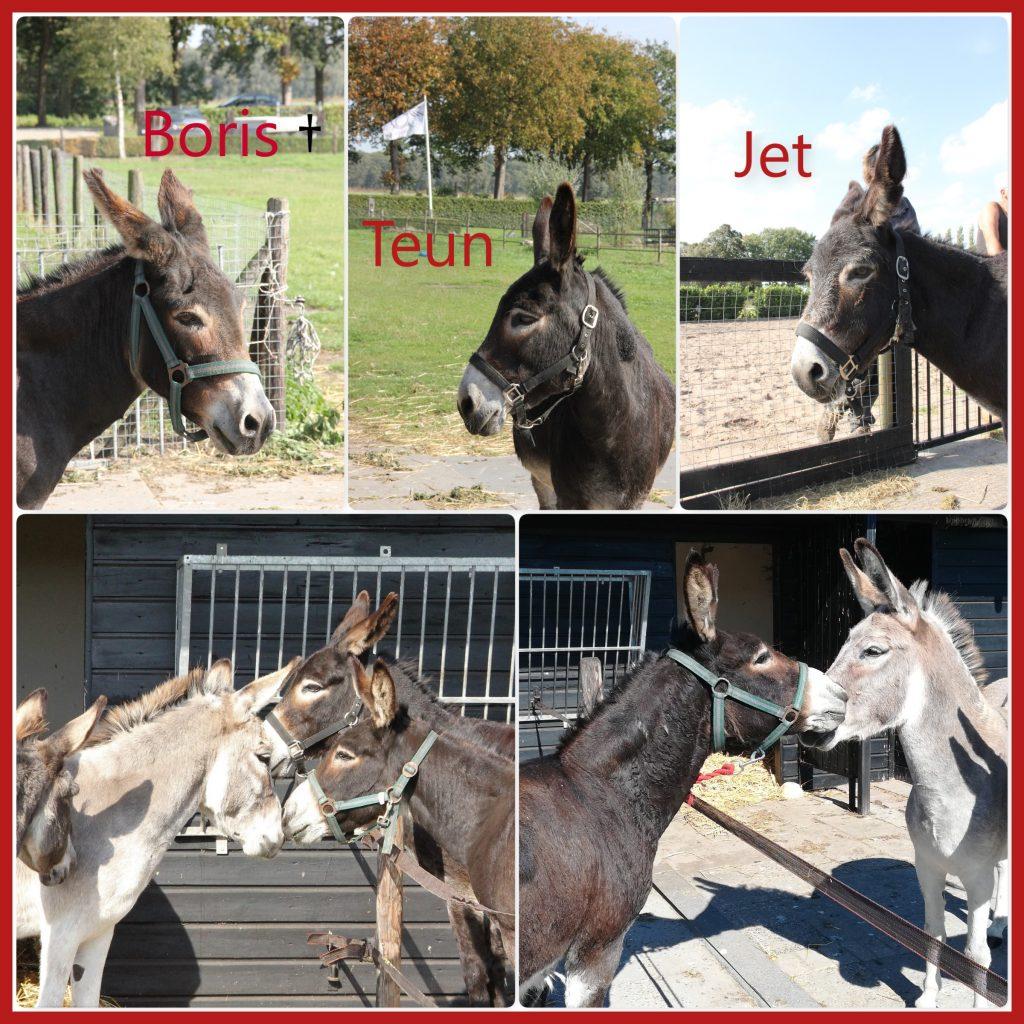 Boris en Teun en Jet